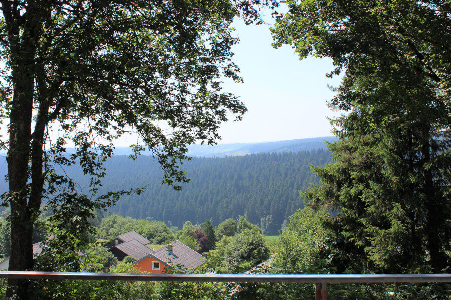 Ausblick Haus Horst Balkon
